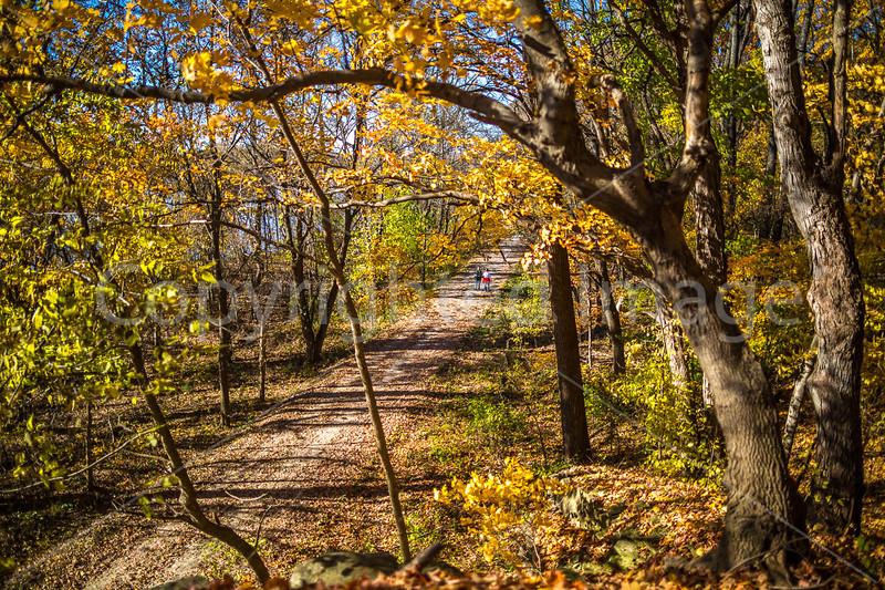 Katy Trail near Rocheport, Missouri - 11-9-13 - C1-0220 - 72 ppi