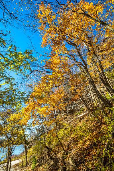 Katy Trail near Rocheport, Missouri - 11-9-13 - C1-0060 - 72 ppi