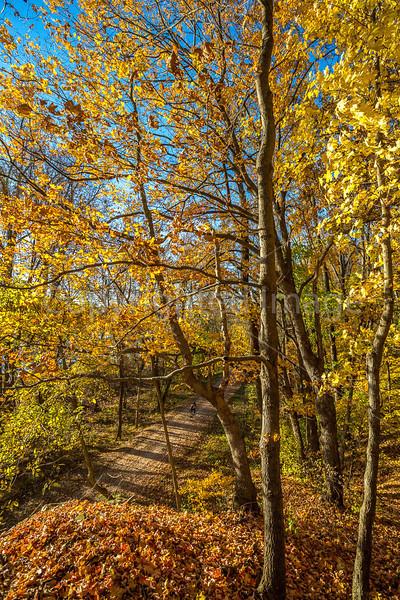 Katy Trail near Rocheport, Missouri - 11-9-13 - C2-0098 - 72 ppi