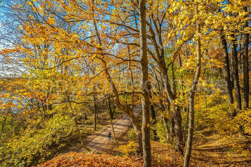 Katy Trail near Rocheport, Missouri - 11-9-13 - C2-0113 - 72 ppi
