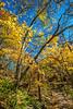 Katy Trail near Rocheport, Missouri - 11-9-13 - C1-0062 - 72 ppi