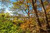 Katy Trail near Rocheport, Missouri - 11-9-13 - C1-0077 - 72 ppi