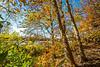 Katy Trail near Rocheport, Missouri - 11-9-13 - C1-0075 - 72 ppi
