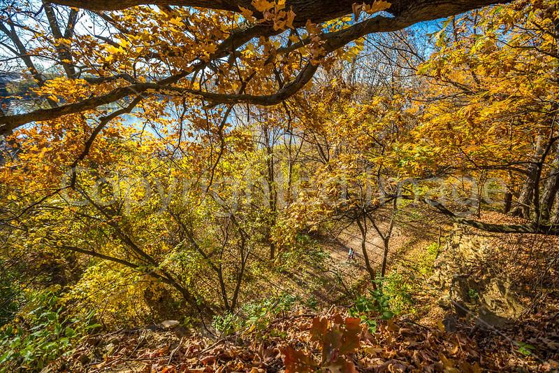Katy Trail near Rocheport, Missouri - 11-9-13 - C1-0446 - 72 ppi