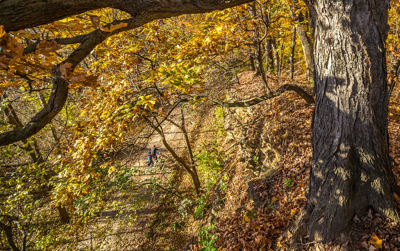 Katy Trail near Rocheport, Missouri - 11-9-13 - C1-0462 - 72 ppi-2