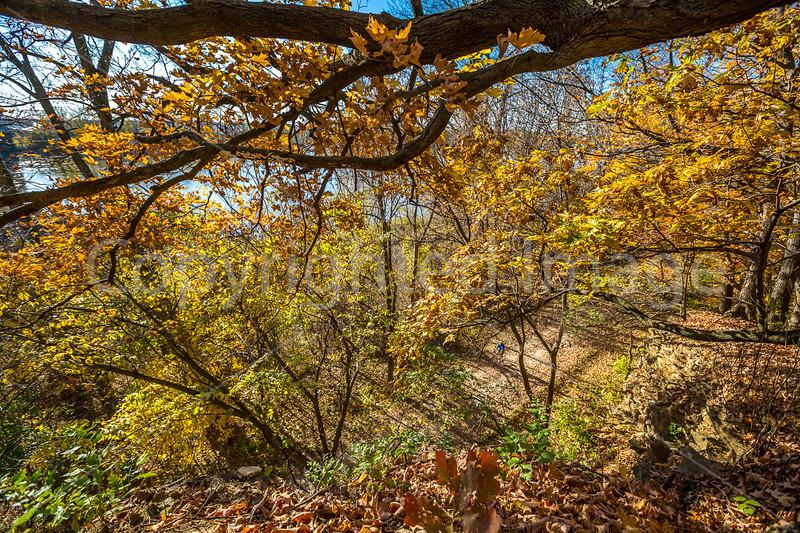 Katy Trail near Rocheport, Missouri - 11-9-13 - C1-0444 - 72 ppi