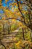 Katy Trail near Rocheport, Missouri - 11-9-13 - C1-0252 - 72 ppi