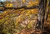 Katy Trail near Rocheport, Missouri - 11-9-13 - C1-0396 - 72 ppi