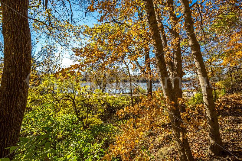Katy Trail near Rocheport, Missouri - 11-9-13 - C1-0072 - 72 ppi