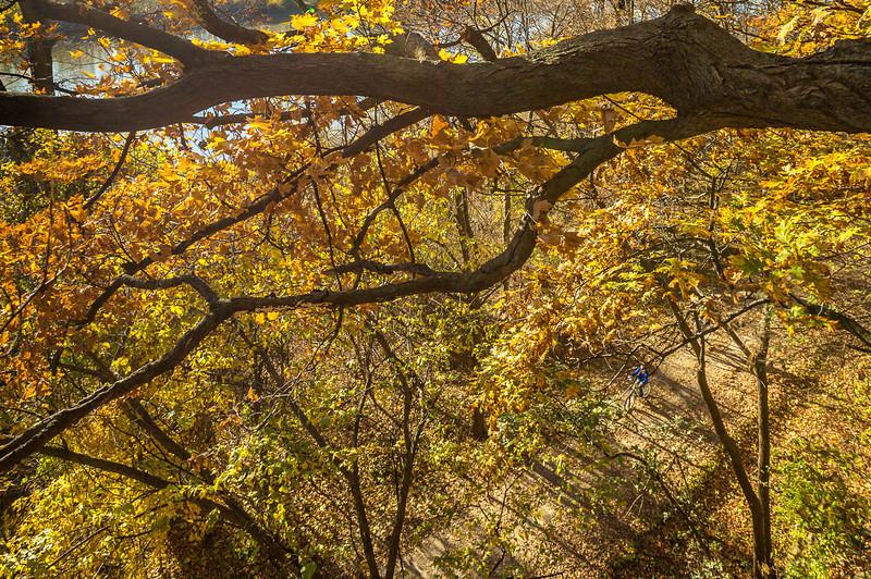 Katy Trail near Rocheport, Missouri - 11-9-13 - C1-0471 - 72 ppi-2