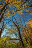 Katy Trail near Rocheport, Missouri - 11-9-13 - C1-0084 - 72 ppi