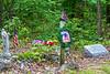 Soldier's grave on Hwy Z off C near Palmer, Missouri - C2-0002 - 72 ppi