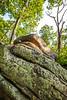 Elephant Rocks State Park, Missouri - C2-0008 - 72 ppi