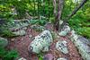 Elephant Rocks State Park, Missouri - C2-0114 - 72 ppi