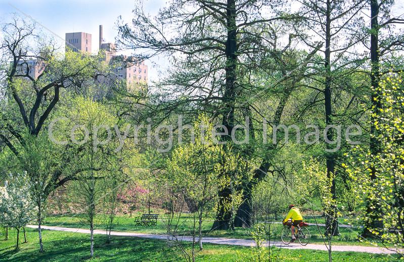 Cyclist in St  Louis, Missouri's, huge urban Forest Park - 20 - 75%