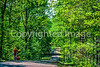 Trail of Tears State Park, southeast Missouri on Mississippi River - 6 - 72 ppi