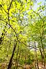 Weldon Springs Conservation Area on Missouri River -0124 - 72 ppi