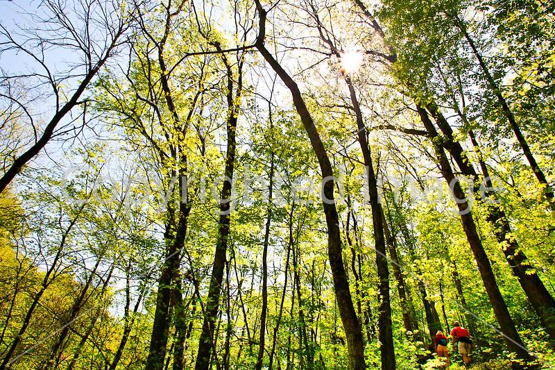 Weldon Springs Conservation Area on Missouri River -0164 - 72 ppi