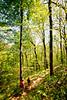 Weldon Springs Conservation Area on Missouri River -0092 - 72 ppi