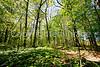 Weldon Springs Conservation Area on Missouri River -0132 - 72 ppi