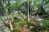 Hikers in Pickle Springs Natural Area, Missouri - 43 - 72 ppi_