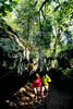 Hikers in Pickle Springs Natural Area, Missouri - 5 - 72 ppi