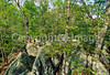 Hikers in Pickle Springs Natural Area, Missouri - 23 - 72 ppi