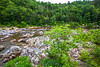 Johnson's Shut-Ins State Park, Missouri - C2-0166 - 72 ppi