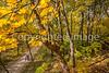 Katy Trail near Rocheport, MO - C1-0474 - 72 ppi