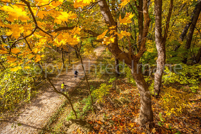 Katy Trail near Rocheport, MO - C2-0062 - 72 ppi