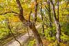 Katy Trail near Rocheport, MO - C1-0399 - 72 ppi
