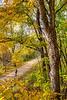 Katy Trail near Rocheport, MO - C2-0099 - 72 ppi