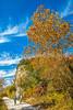 Katy Trail near Rocheport, MO - C1-0180 - 72 ppi