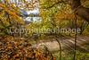 Katy Trail near Rocheport, MO - C1-0393 - 72 ppi