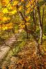 Katy Trail near Rocheport, MO - C2-0065 - 72 ppi