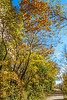 Katy Trail near Rocheport, MO - C1-0061 - 72 ppi