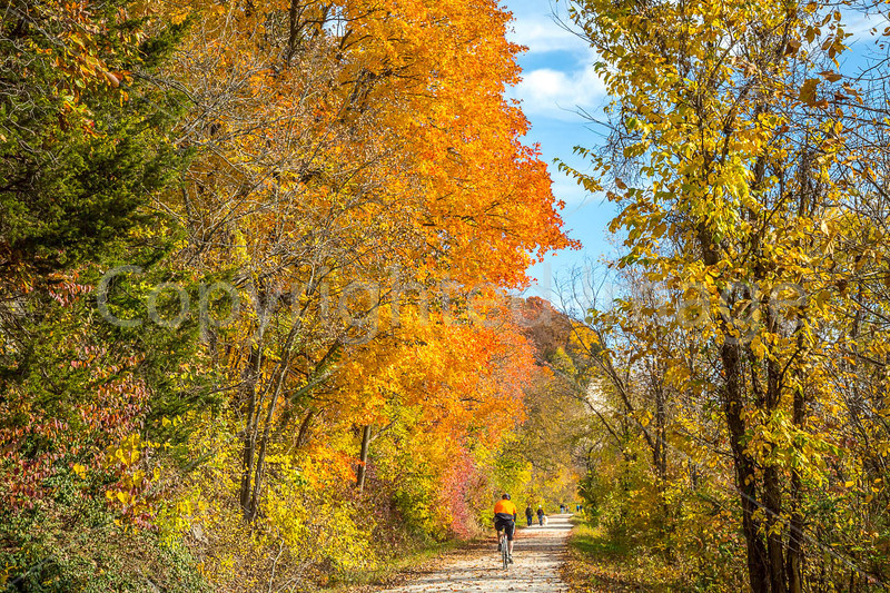Katy Trail near Rocheport, MO - C3-0065 - 72 ppi