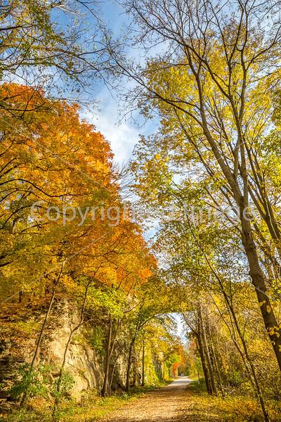 Katy Trail near Rocheport, MO - C1-0356 - 72 ppi