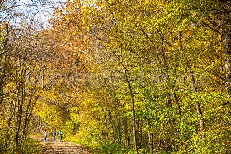 Katy Trail near Rocheport, MO - C3-0178 - 72 ppi