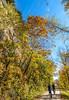 Katy Trail near Rocheport, MO - C1-0076 - 72 ppi