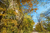 Katy Trail near Rocheport, MO - C1-0053 - 72 ppi