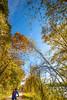 Katy Trail near Rocheport, MO - C1-0080 - 72 ppi