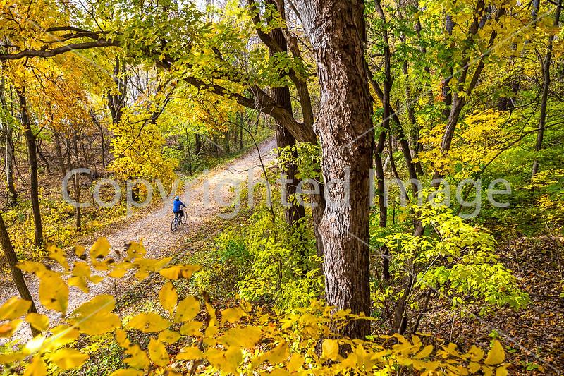 Katy Trail near Rocheport, MO - C1-0094 - 72 ppi