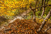 Katy Trail near Rocheport, MO - C1-0454 - 72 ppi