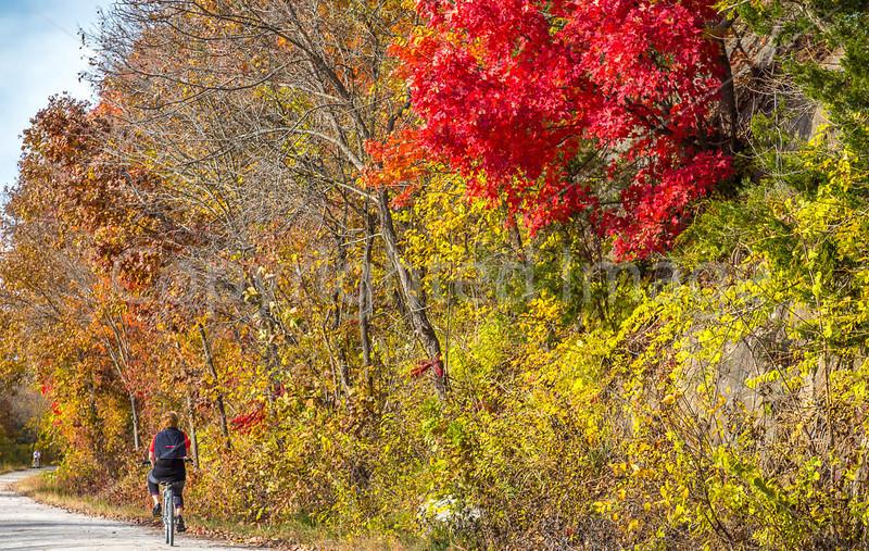 Katy Trail near Rocheport, MO - C3-0154 - 72 ppi