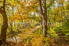 Katy Trail near Rocheport, MO - C2-0149 - 72 ppi