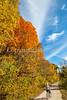 Katy Trail near Rocheport, MO - C1-0254 - 72 ppi
