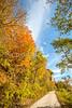 Katy Trail near Rocheport, MO - C1-0264 - 72 ppi