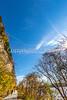Katy Trail near Rocheport, MO - C1-0123 - 72 ppi