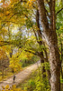 Katy Trail near Rocheport, MO - C2-0099 - 72 ppi-2